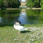 Parco di Villa Annoni