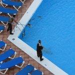 Pulizia giornaliera della piscina