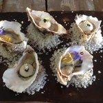 Huîtres marinées,sorbet au huîtres