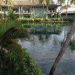 dolphin lagoon area