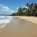 Beach on a busy day!