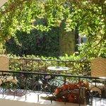 Mamey room terrace