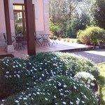 Un rincón del precioso jardín