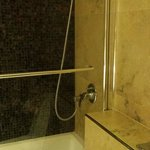 Shower- including drench