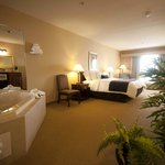 Town & Country Inn and Suites Quincy Foto