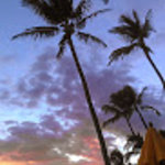 Beauty awaits you at Kihei Kai