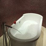 The gorgeous free standing bath!