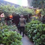 el jardin de entrada al restaurant,  lo mejor de todo.