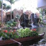 Lagoon adjacent to reception