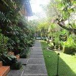 jardin menant aux chambre et à la piscine