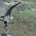 Lookout Mountain      Chattanooga, TN 37409