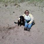 Our dog enjoyed  the beach