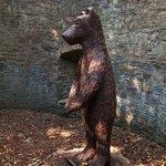 Botanical Gardens, Sheffield - The Bearpit