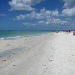 Norra delen av Siesta Key Public Beach