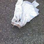 Underwear in the parking lot