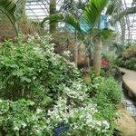 Nanshan Botanical Gardens