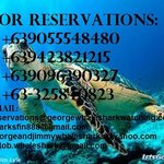 diving reservations