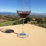 Toller Wein mit toller Aussicht