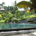 Espace parc/piscine