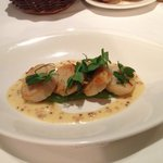 Grilled hand dived scallops