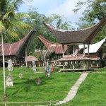 Excursion Pays Toraja