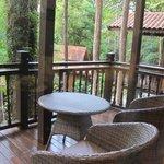 Rainforest Suite/Studio balcony