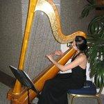 Приятная фоновая живая музыка в холле...