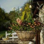 flowerpot beside cottage door