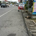 Road to Chalong pier, my tip, get a cab its only 200 baht