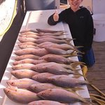 Look at those yellowtail snapper! What a haul.