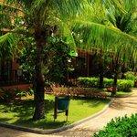 Lanta Casuarina - Les jardins