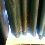 Curtain covered in mold.