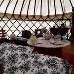 Moroccan Yurt