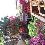 riad en fleur 14
