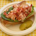 medium lobster roll
