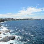Bondi to Coogee Beach Coastal Walk (5)