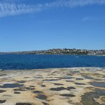 Bondi to Coogee Beach Coastal Walk (3)