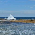 Bondi to Coogee Beach Coastal Walk (2)