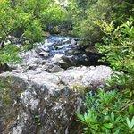 River Lugwy
