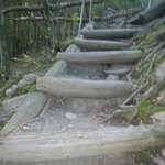 Rough hewn stairs