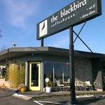 Photo of Blackbird Coffeehouse
