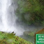 As far as you can go on the Multnomah Falls trail
