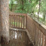 Lovley deck & tree trunk growing up thru cabin #4 deck