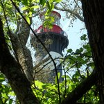 Lighthouse seen from a path in the woods