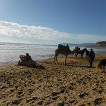 la plage et possibilité de faire des ballades
