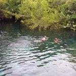 Lagoon Diving Platform