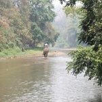 Treking through the river
