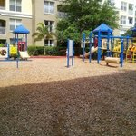 Playground area between building 4/5