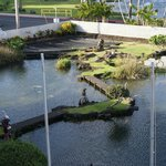 View of the Koi pond from the room