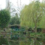 Fondation Claude Monet - Ponte e Nympheas